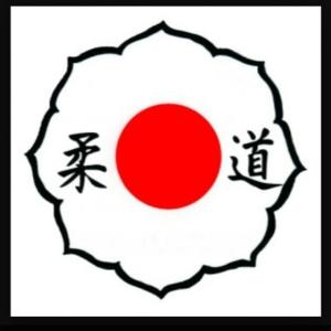 PERGUNTA: O símbolo acima é o símbolo oficial da Kodokan…