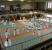 Dojo principal na Kodokan, no 7º andar, olhando para baixo a partir da galeria para espectadores, no 8º andar.